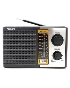 Радіоприймач GOLON RX-F10UR USB/SD